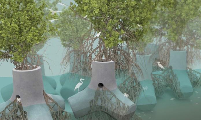 TetraPOT – sử dụng rừng ngập mặn để phát triển hệ thống phòng thủ biển xanh.