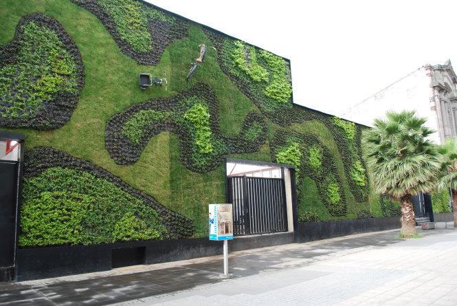 Bức tường xanh đa dạng chủng loài thực vật rộng 280m2 ở Trường đại học Del Claustro.