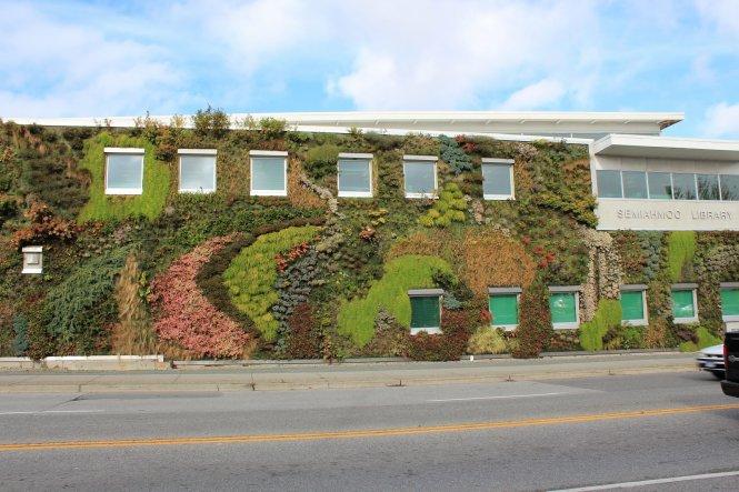 Bức tường xanh của thư viện công cộng Semiahmoo ở White Rock là bức tường thực vật lớn nhất Vancouver với hơn 10.000 cây cảnh thuộc hơn 120 loài, bao gồm cây lâu năm, cây bụi...
