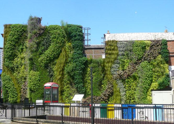 Một khu vườn thẳng đứng ở góc đường Edgware Road, London.