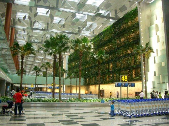 Một bức tường xanh nhìn ra khu vực nhận hành lý tại nhà ga số 3 sân bay Changi.