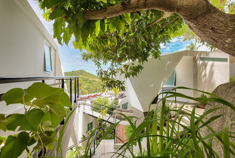 Nhiều loại cây xanh lấp đầy các khoảng trống kiến trúc, tiếp thêm sức sống cho khu nghỉ dưỡng
